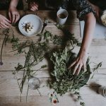 Medicinal Herbs You Should Have and Grow at Home